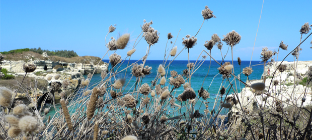 Urlaub Puglia